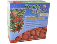 TOPSY TURVY Strawberry Planter H�ngepflanzer Erdbeere
